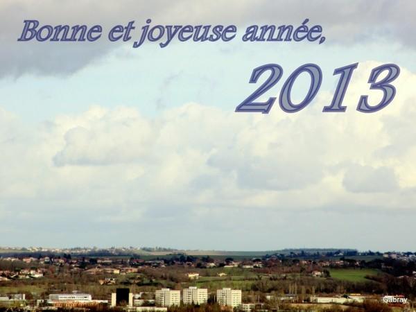 D11---La-bonne-annee.JPG