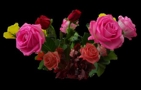 Tubes bouquets de roses