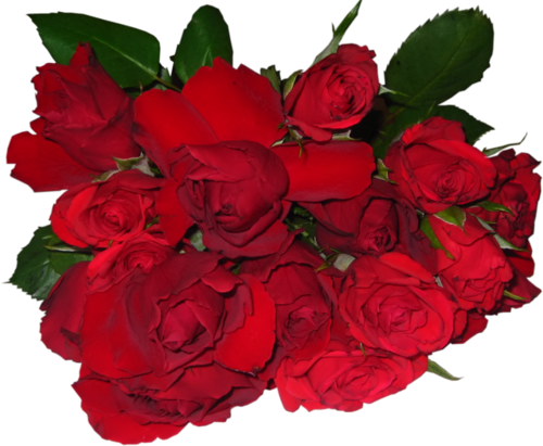 Fleurs ( bouquet ou composition ) 8