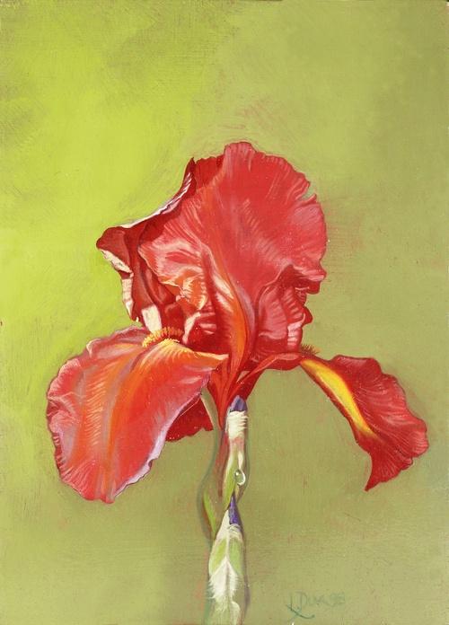 Bouquet de Fleurs Martiniquaises