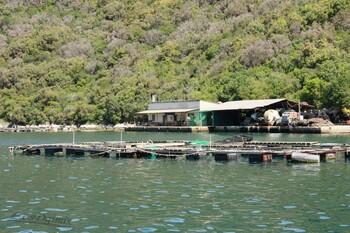 Le fjord de Lim