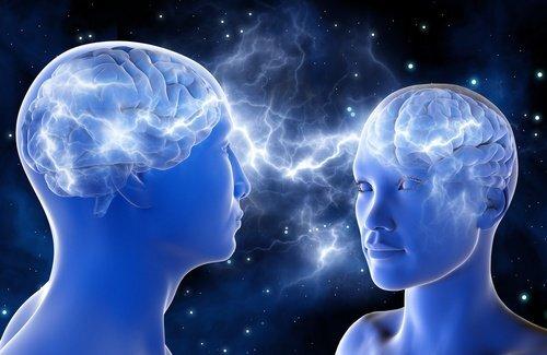 cerveau-500x325