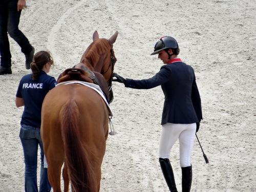 Jeux équestres mondiaux 2014 - Caen 6/9/14