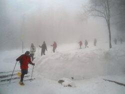 Neige & brouillard ce 26 janvier