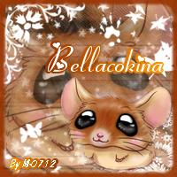 Kit Bellacokina