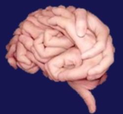 Quand le cerveau nous trompe