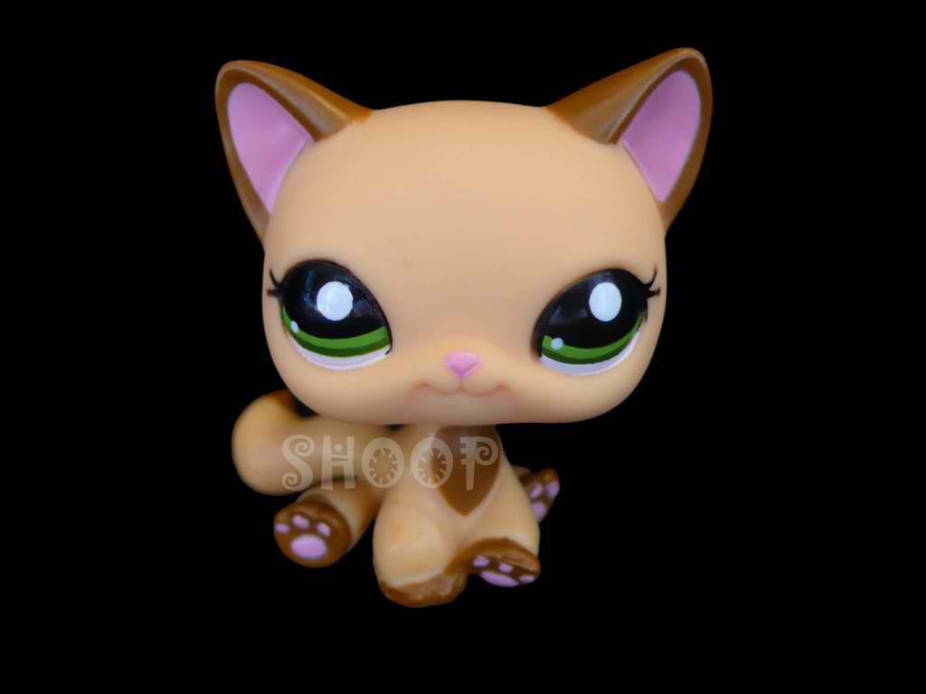 LPS 2037