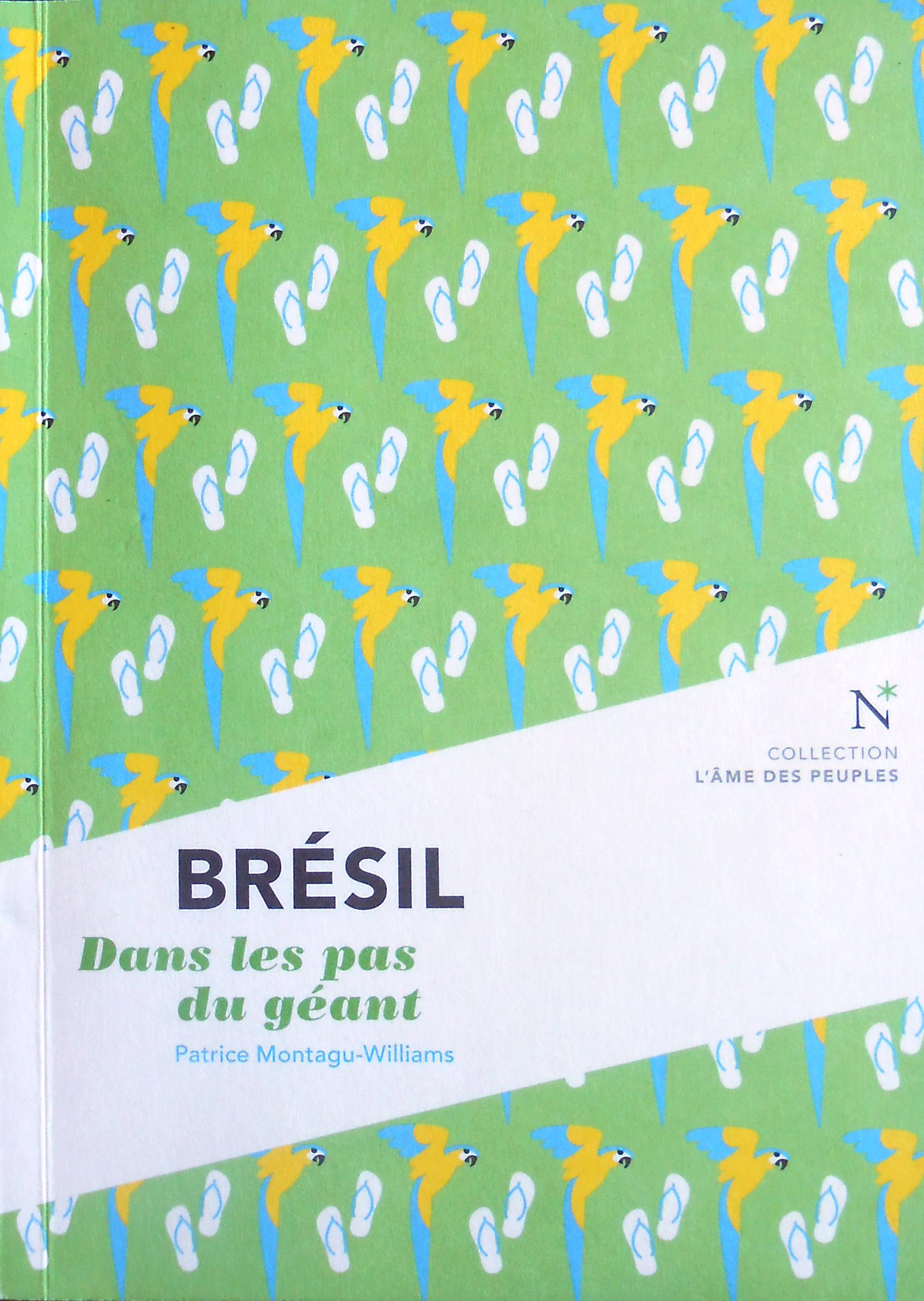 Brésil. Dans les pas du géant Patrice Montagu-Williams Bibliolingus