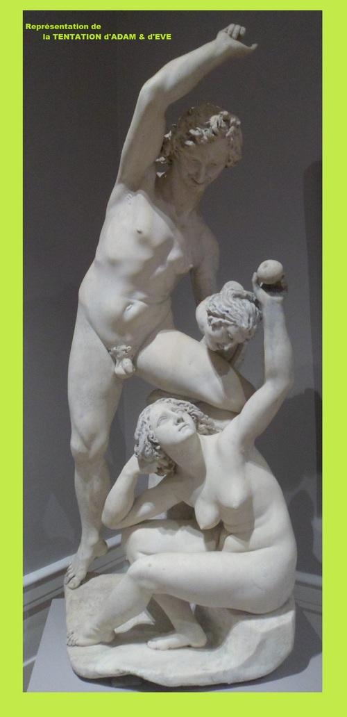 LE MANS - Musée de Tessée
