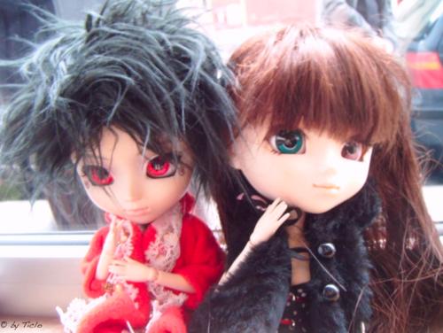 27/10/2011 - Petites Demoiselles