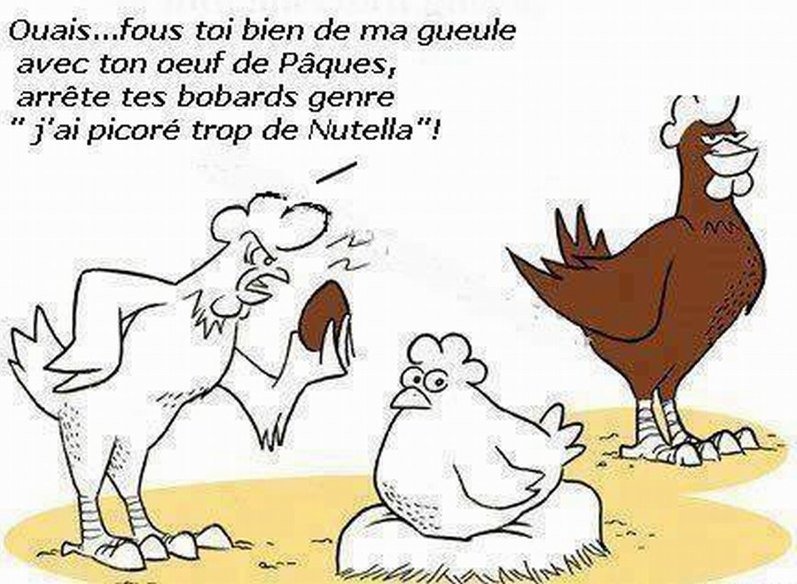 Les blagues en images - Page 17 SaFr_wAxfrAX9di9TYCZzWqermo
