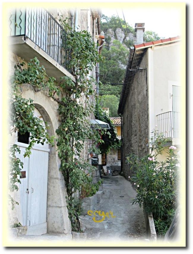 Joli petit village (2)