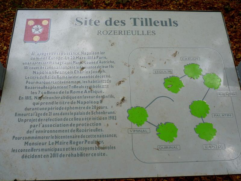A la recherche du Hêtre des Batailles à Châtel- Saint-Germain