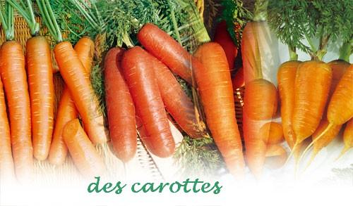 La soupe au caillou : les légumes