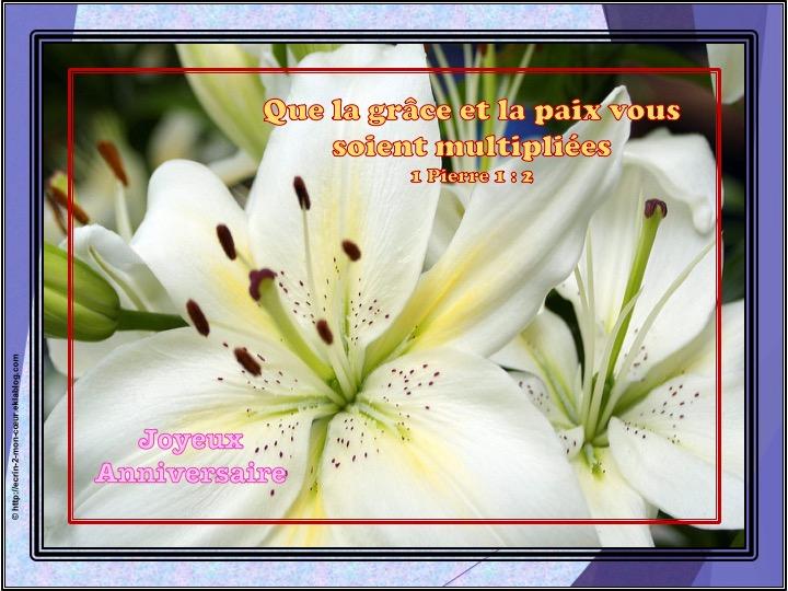 Joyeux Anniversaire - 1 Pierre 1 : 2