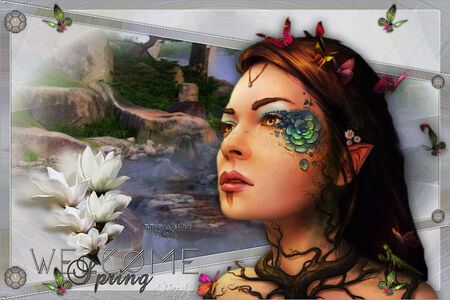 Welcome Spring, vos versions