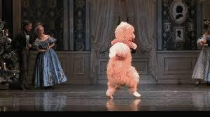 dance ballet nutcracker bears dancing