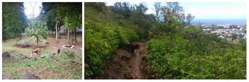 Le sentier botanique de la Providence (RANDONNÉE)