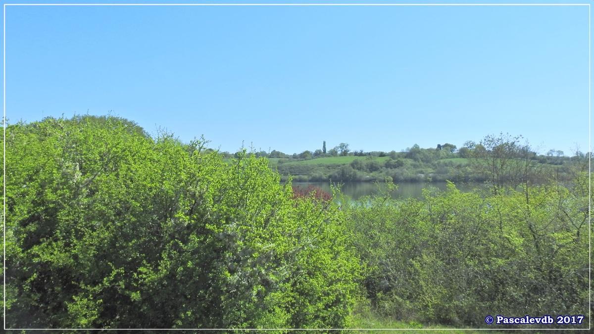 Le lac de La Prade - Avril 2017 - 2/12