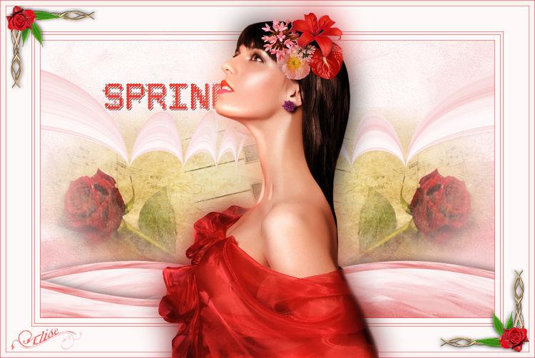 Spring    de Belle de nuit