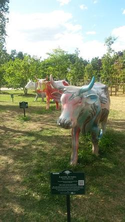 Une exposition sur les vaches au jardin d'acclimatation à Paris: idées pour les arts visuels...