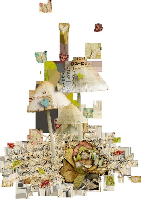 Scrap - objets - nature
