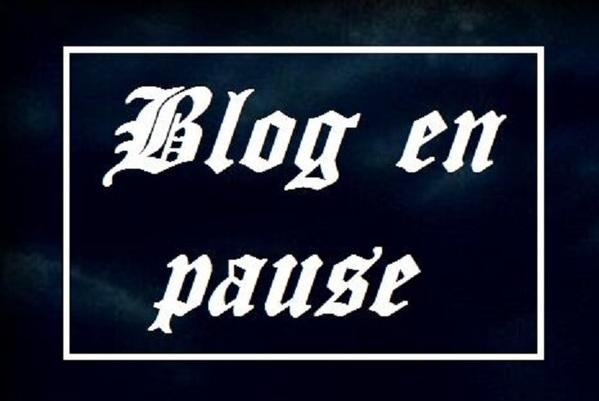 Blog en pause........