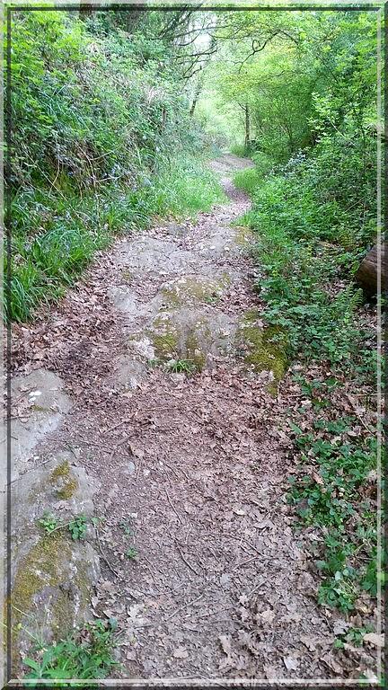 907 - Suite10 : -Notre Chemin vers St Jacques de Compostelle à travers ses anecdotes-
