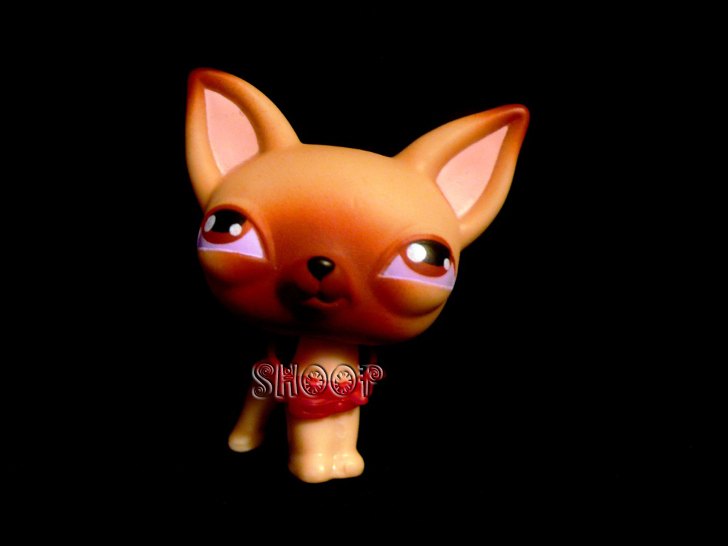 LPS 0001