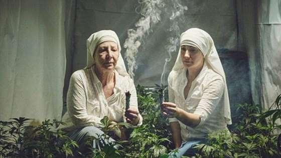 Des bonnes soeurs deviennent riches en cultivant de la marijuana !