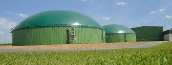 L'énergie de biomasse