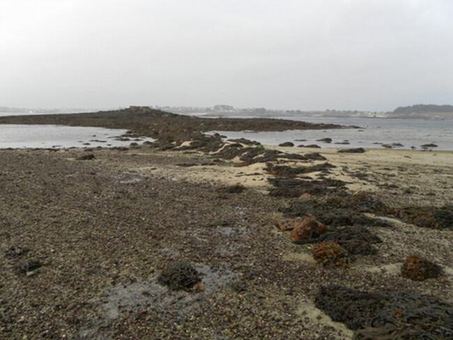 Île de BATZ - Le port, l'île aux moutons, pors kernoc ... !!!