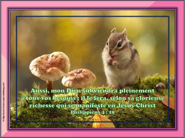 Mon Dieu subviendra pleinement à tous vos besoins - Philippiens 4 : 19