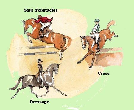 Les différentes activités équestres (galop 1)