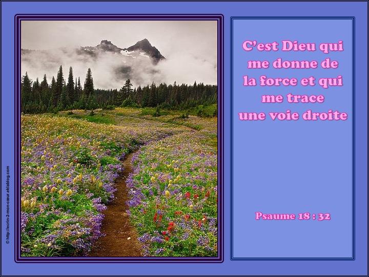 C'est Dieu qui me donne de la force - Psaumes 18 : 32