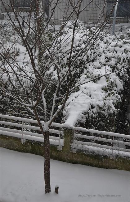 Il neige 12 mars 2013 2