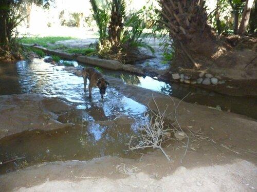 De Merzouga à Ouarzazate.