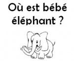 Où est bébé éléphant?