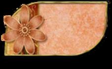 Vintage marron et rose vieux
