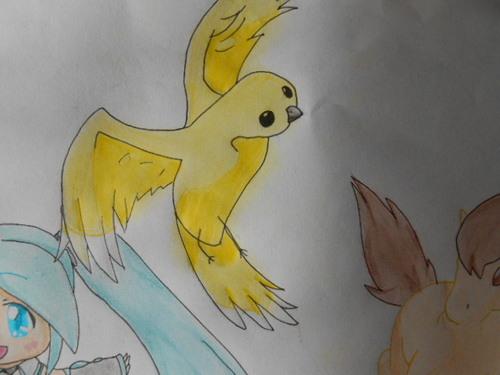 Oiseau Pour Ma Tante 2014