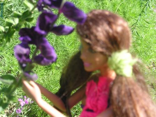 Les fleurs!!!