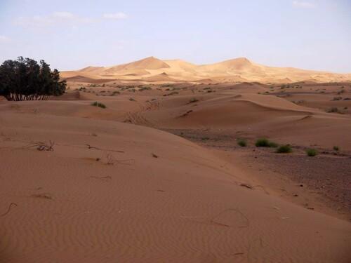 Ombre et lumière sur les dunes