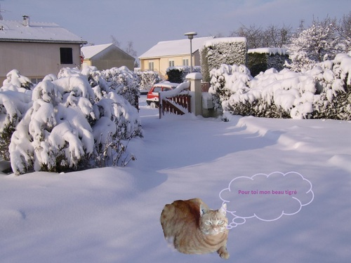 Doly et la neige !!