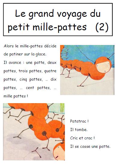 LE GRAND VOYAGE DU PETIT MILLE-PATTES