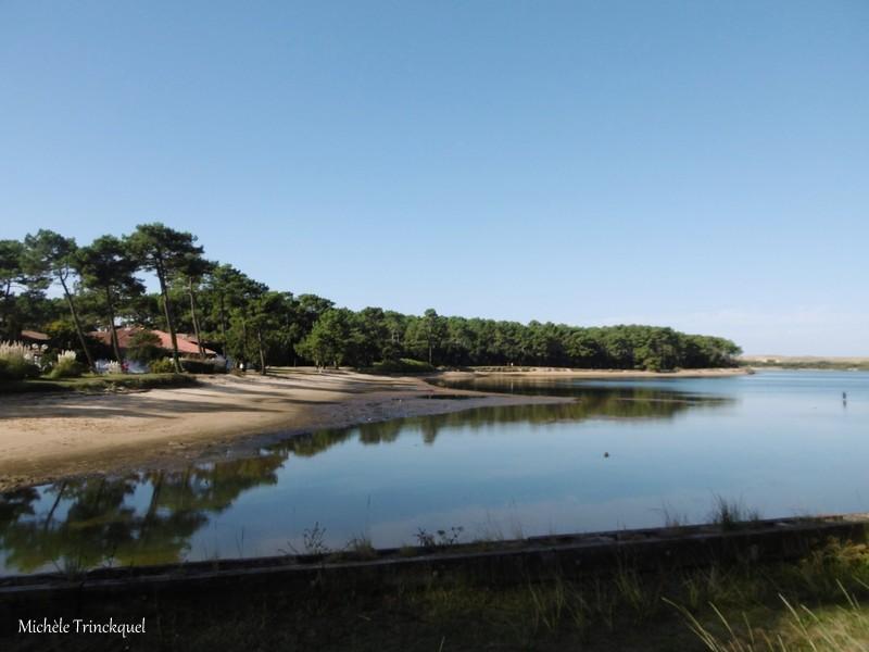 Une balade autour du Lac marin de VIEUX BOUCAU (40), le 13 octobre (suite)...