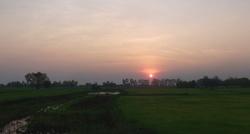 Un coucher de soleil sur la rizière...