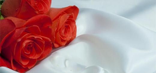 Les piliers et conditions de l'acte de mariage