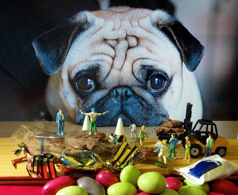 Aujourd'huii : Un bourgeois qui s'ennuie, un chien et décollage pour Berck