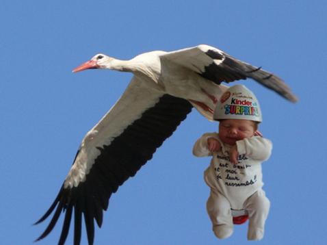 """Résultat de recherche d'images pour """"bébé en cigogne humour"""""""