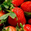 icon fraise